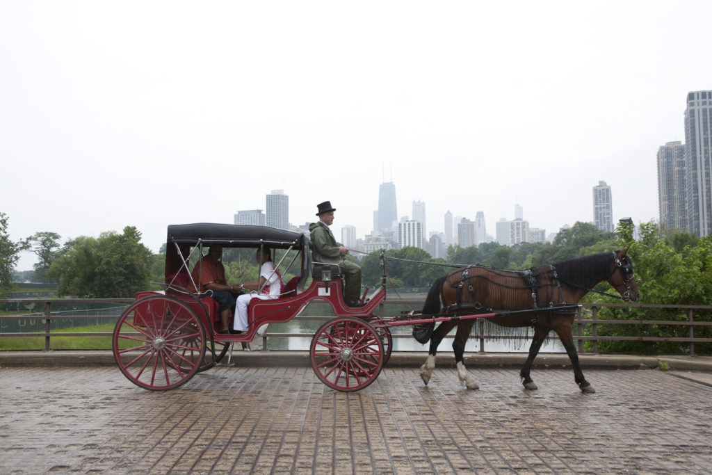 Horse Carriage Ride on Michigan Avenue in Chicago Downtown
