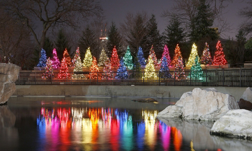 Lincoln Park Zoo Lights Chicago