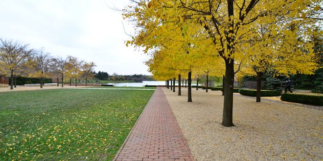 Chicago Botanic Garden Things to do in Chicago in Fall